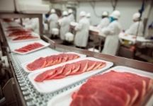 Essential Equipment for Food and Beverage Processing