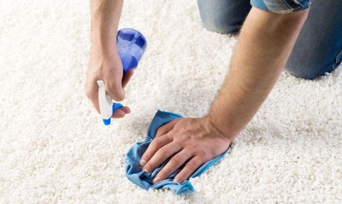 How To Get the Pet Smell Out of Carpet