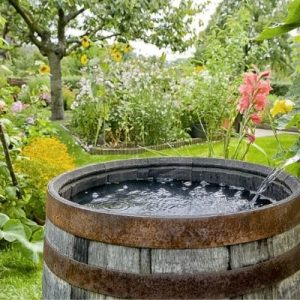 Ways To Capture and Store Rainwater