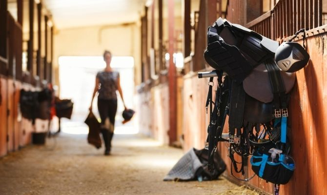 Tips for Starting a Horseback Riding Lessons Business