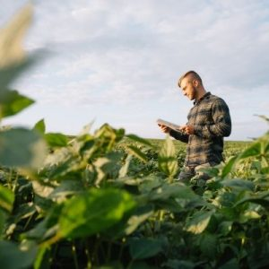 Tips To Help Beginning Farmers