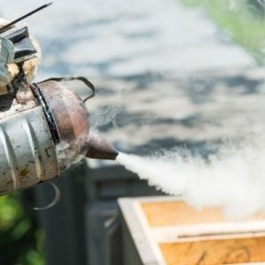 Why Beekeepers Use Smoke To Calm Bees